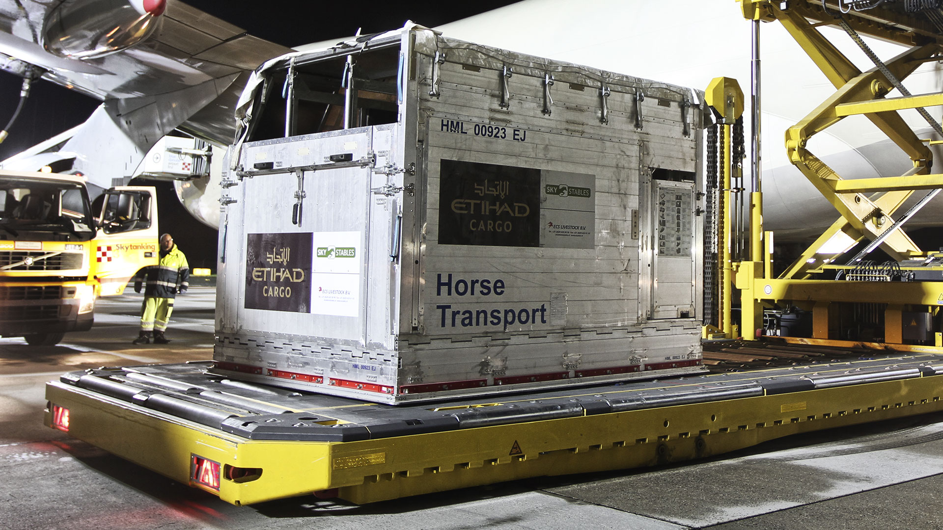 Horse airfreight transport box